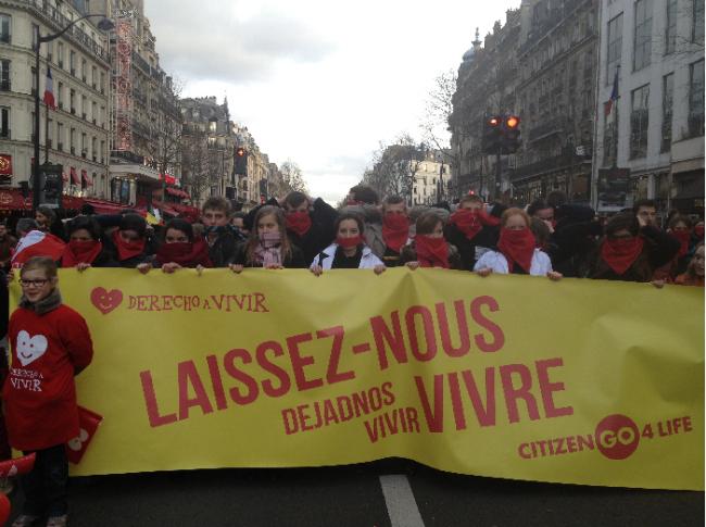 Marcha pela Vida, em Paris, ocorrida em 19 de janeiro. (Foto: Marche Pour La Vie / Divulgação)