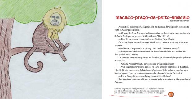 Livro infantil gratuito ensina preservação da fauna brasileira