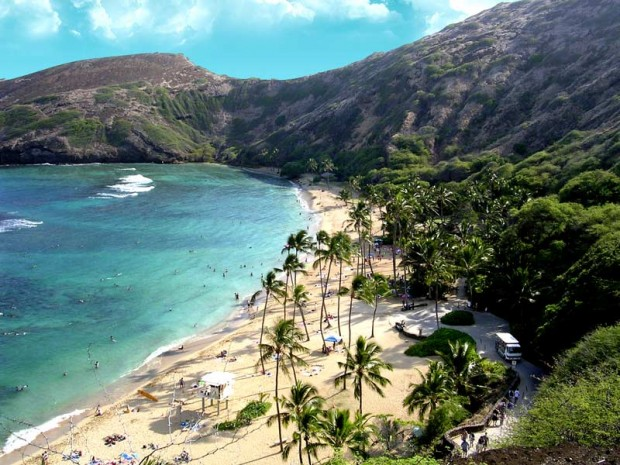 Ases a Bordo - Hanauma Bay - Havai