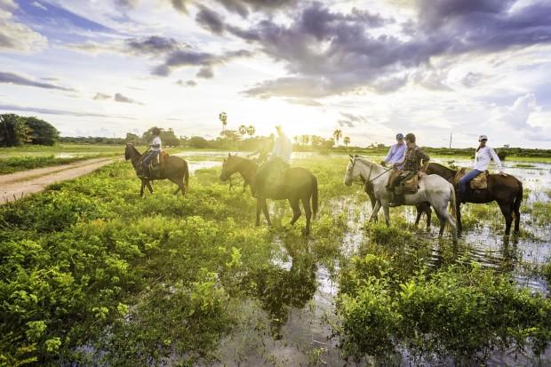 Cavalgada em região alagada do Pantanal Mato-grossense (foto: Bigstock).