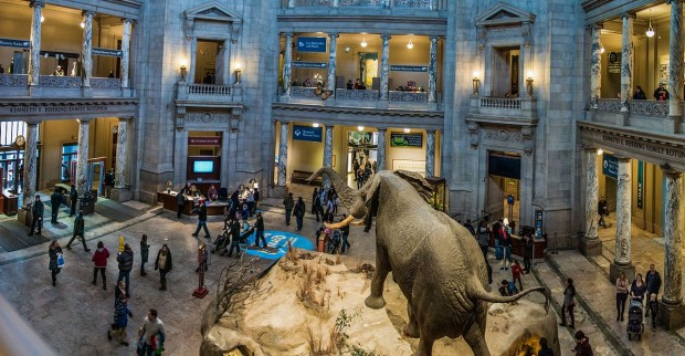 museu natural history