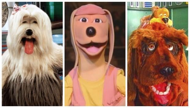 A tevê feita só por cachorros: relembre a TV Colosso!