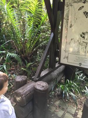 Trilha e placa do bosque alemão - curitiba/pr