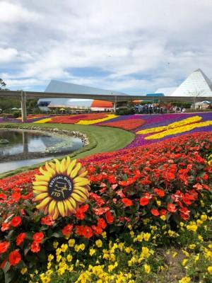 Flores do Flower and Garden Festival 2018