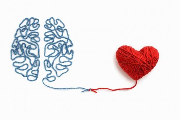 A inteligência entre a solidão e a felicidade