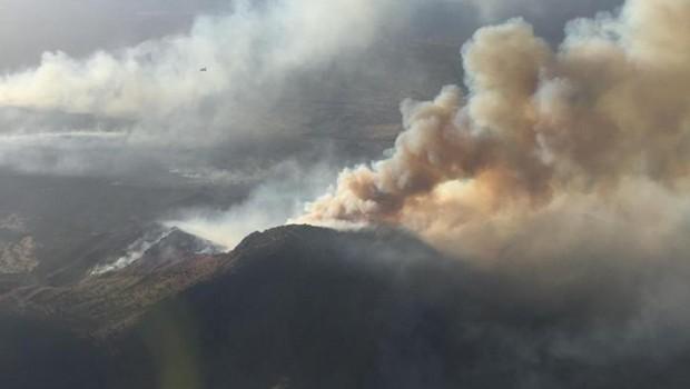 Incêndio causado por Dickey. Foto: Divulgação/Arizona Department of Forestry and Fire Management