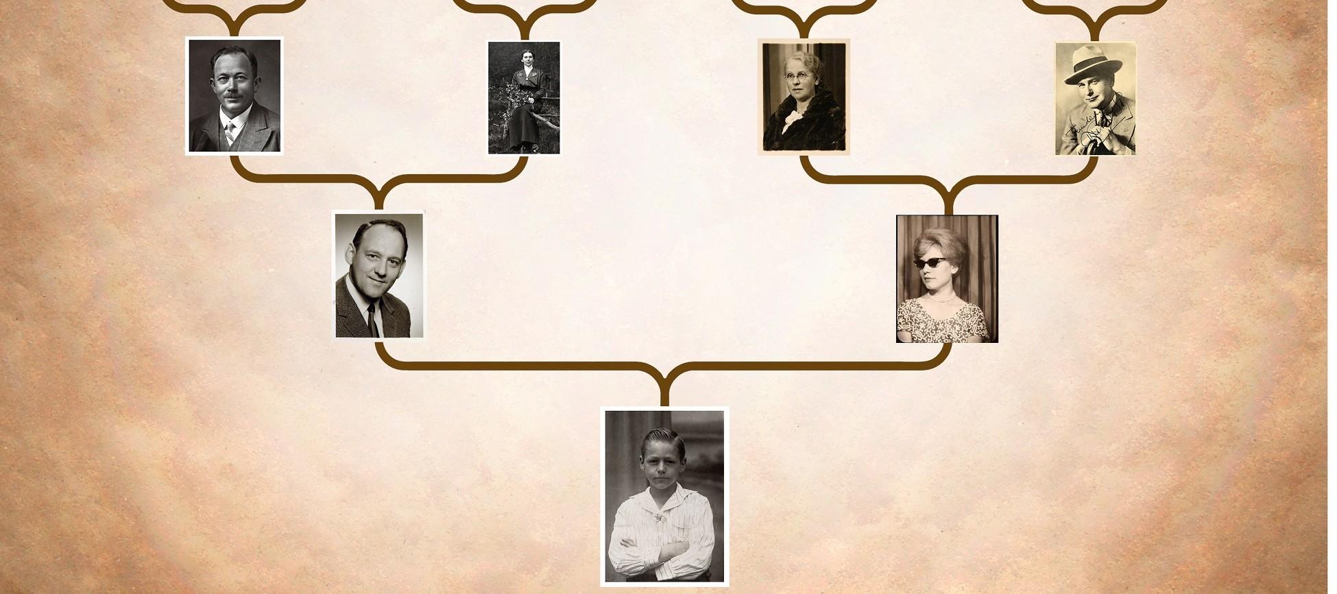 7 Sites Para Montar Sua Arvore Genealogica